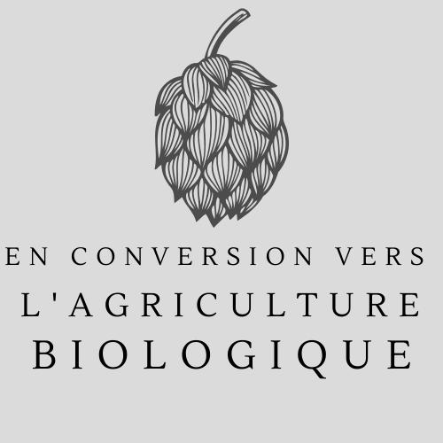 Conversion AB